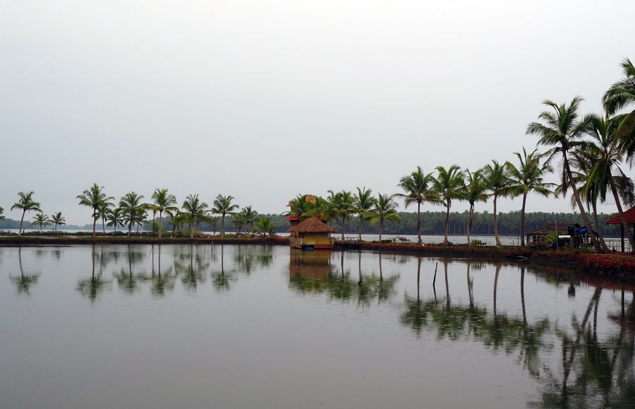 Backwaters pond