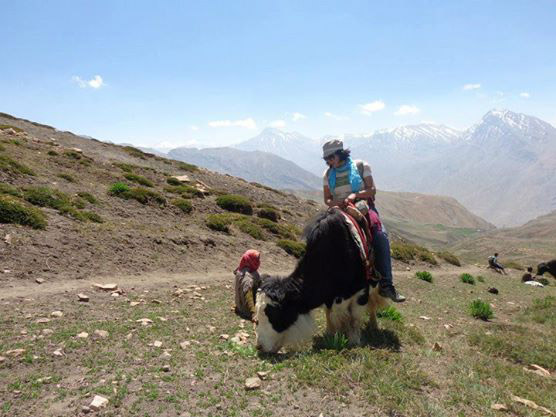 On a yak in the mountains. Photo by Mansee Shah
