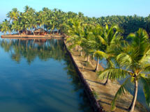Best-Kept Secrets of Kerala