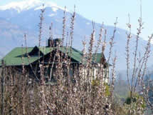 Indulge in Himalayan hospitality with these royal colonial homestays.