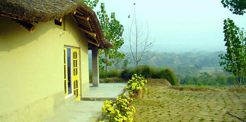 Prakriti farms - Savour traditional Punjabi hospitality in the lap of nature.
