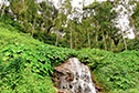Seasonal waterfalls in Coorg