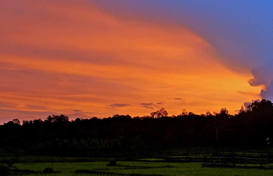 Sunsets from the rice paddies