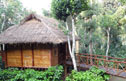 Bamboo homestay on a coffee plantation